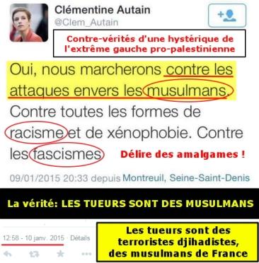 blog -attentats au depart de Charlie hebdo-delire pro palestinien de Autain clementine-tweet 10jan2015