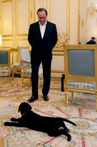 blog -Philae et Hollande debout