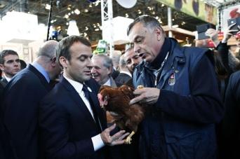blog -Macron accepte une poule au salon-de-l-agriculture-samedi-24-fevrier-a-paris (1).jpg
